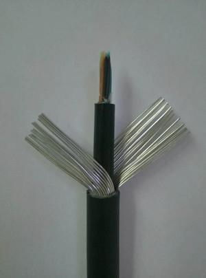 库尔勒MHYAV30X2X0.8矿用通信电缆